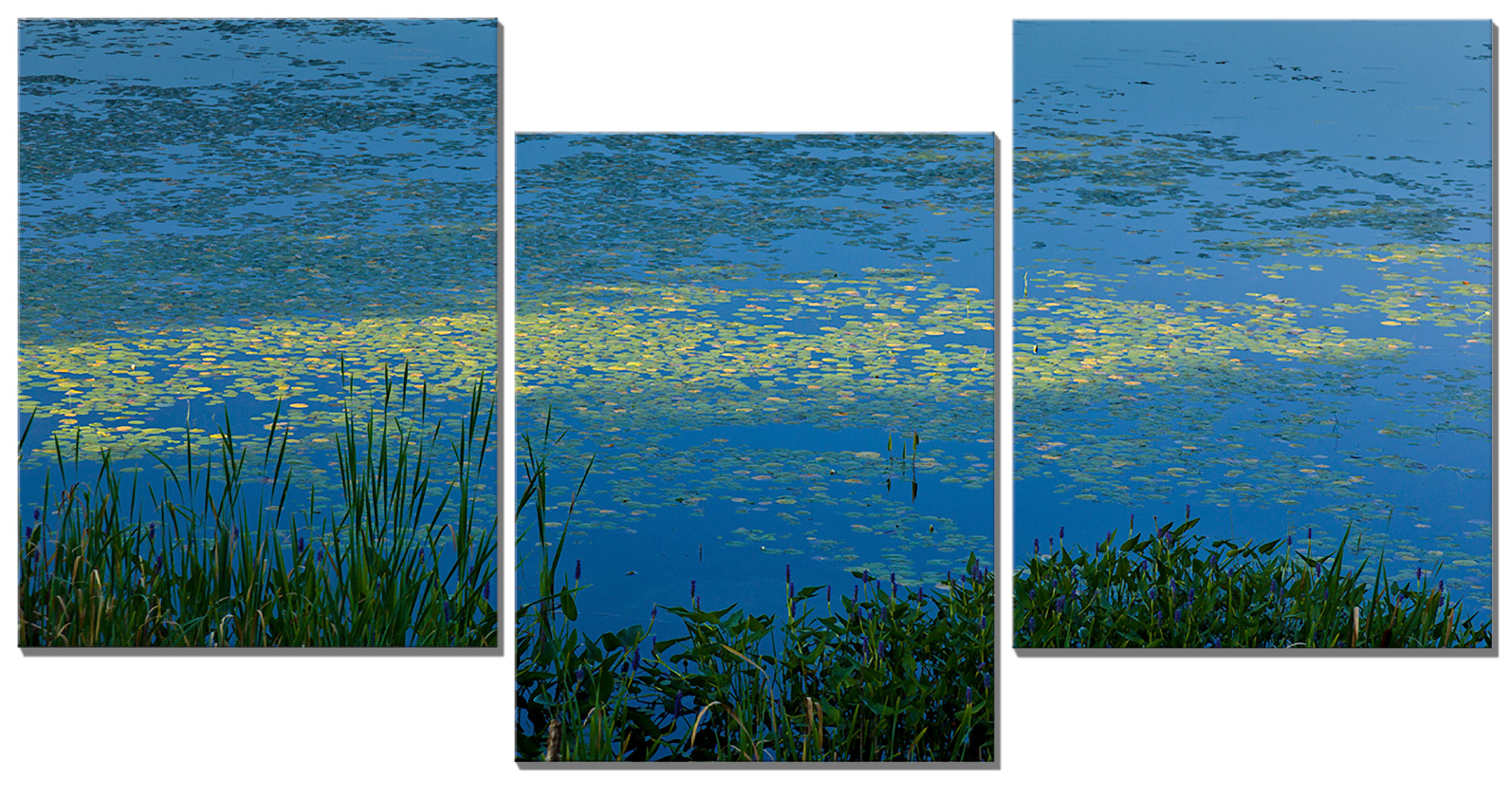 Sunlight Dancing on the Lilies Triptych