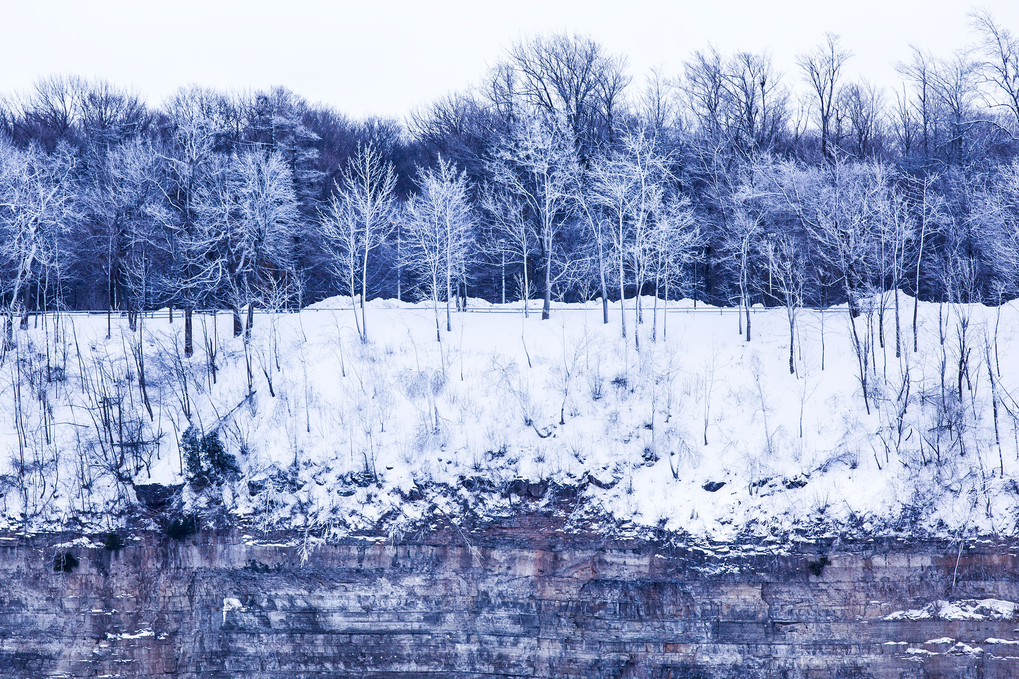 Frozen Sentinels