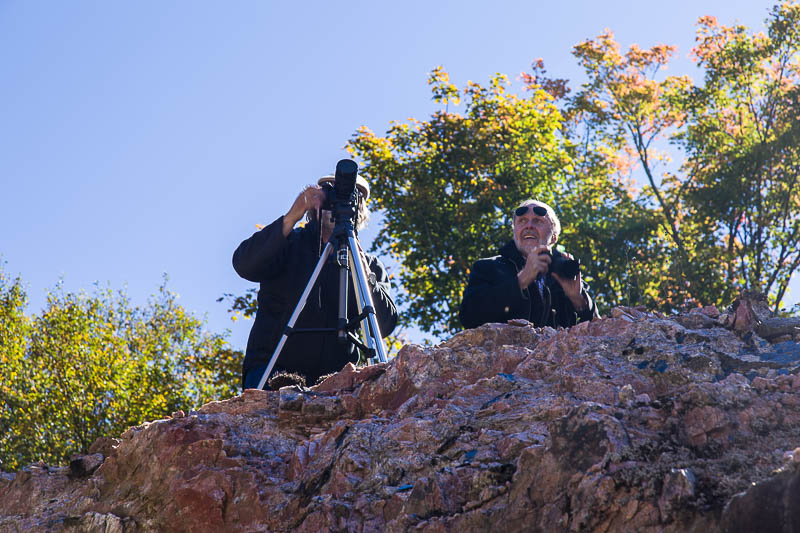 Photo: Attendees capture the fall colours by climbing a rock outcrop.