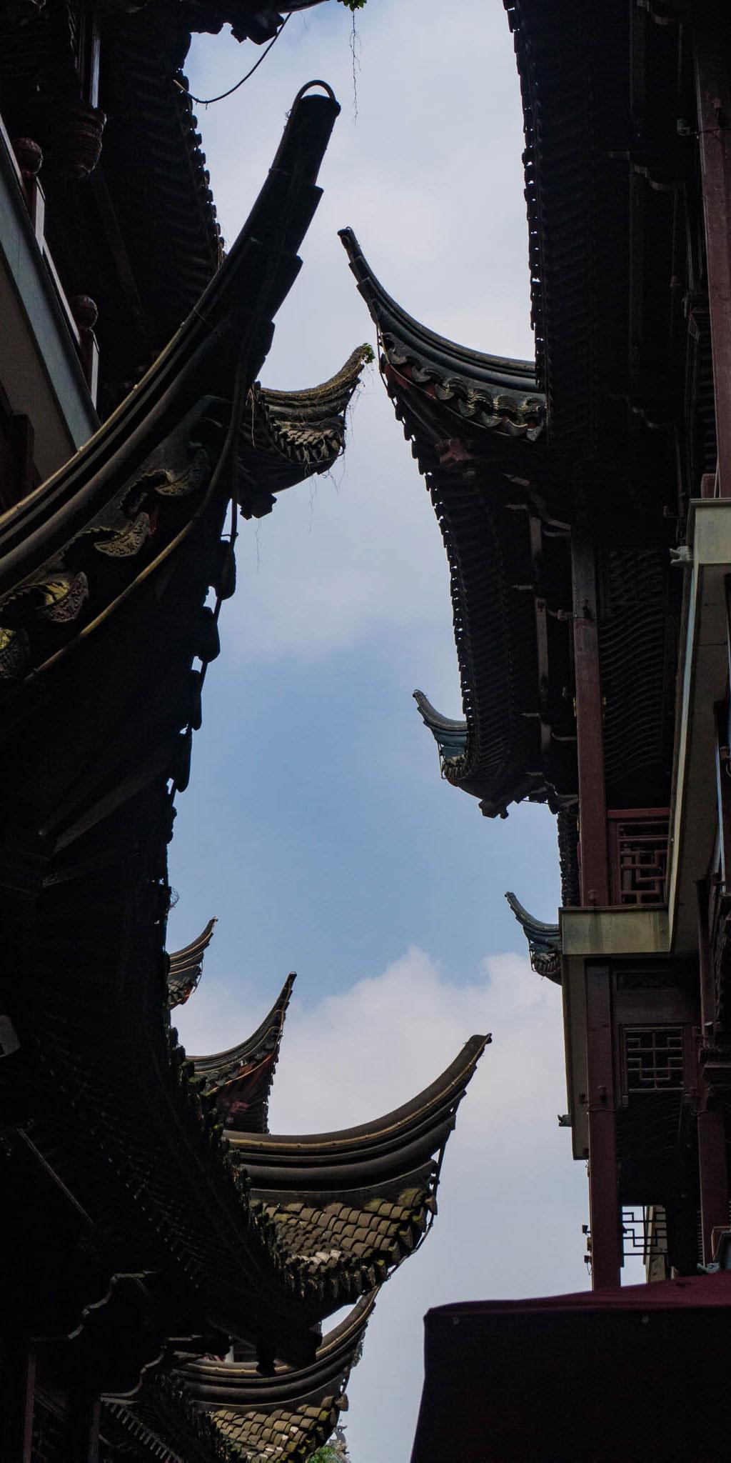 Shanghai Rooflines