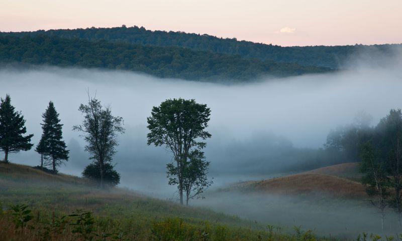 Hanna Misty Morning