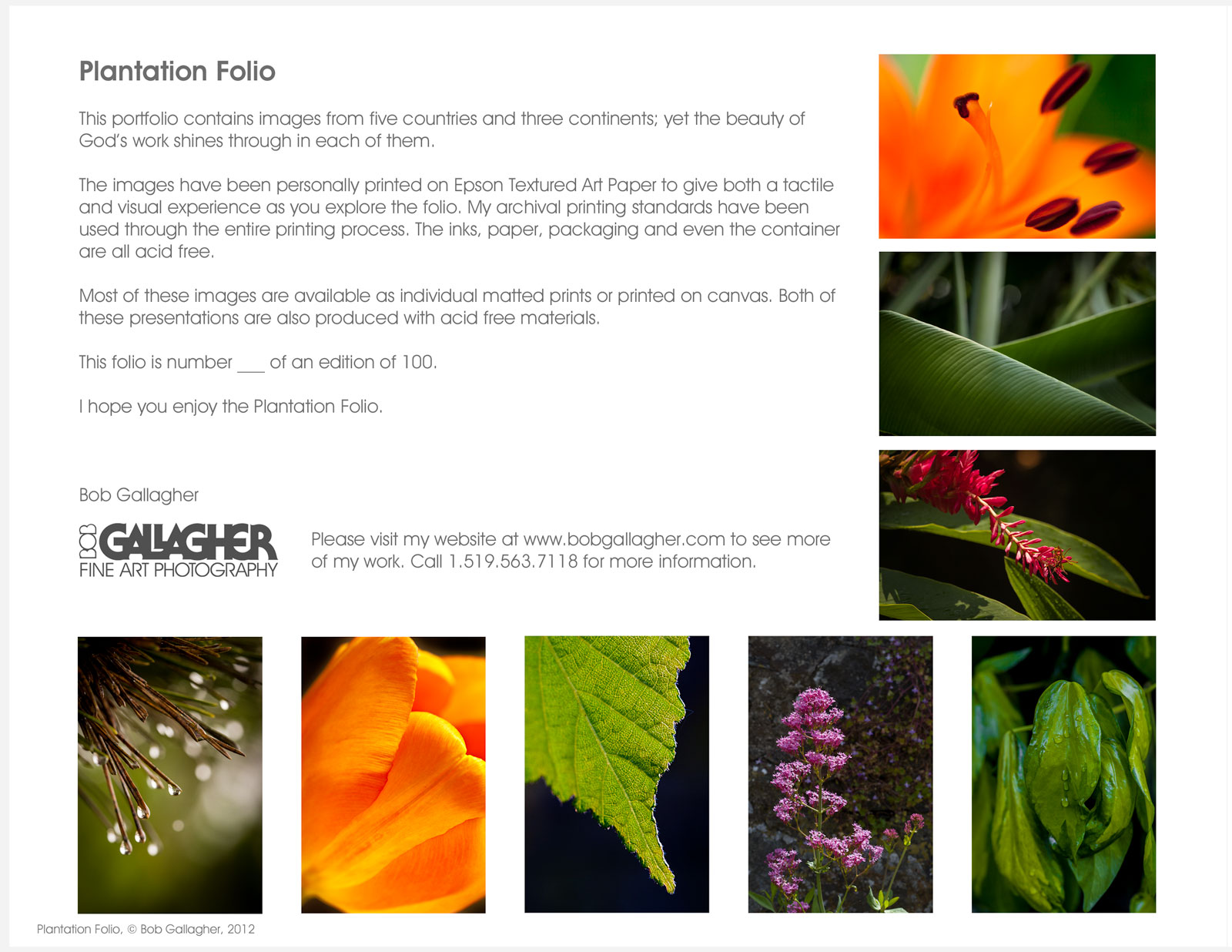 Folio-2-Plantation-Sheet